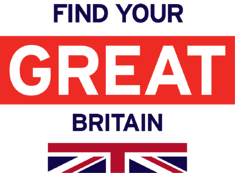FINDYOUR_GREAT_Flag_BLUE_Stacked