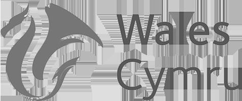 Logo for Visit Wales